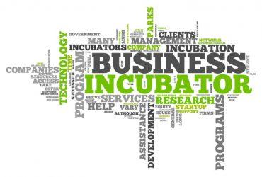 Inkubator Bisnis Itu Apa, Sih ?